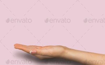 Outstretched female hand over pink background