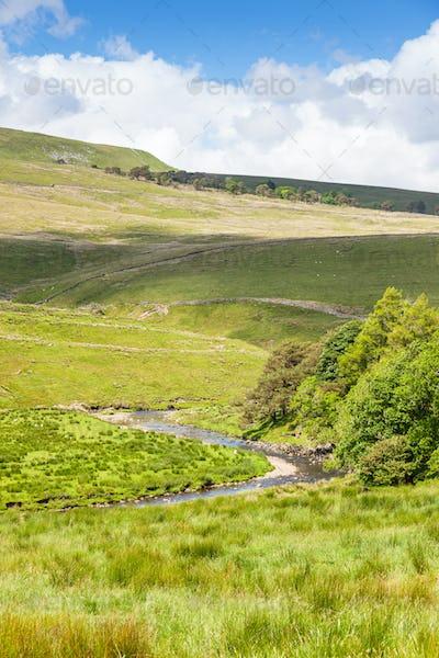 Yorkshire Dales Stream