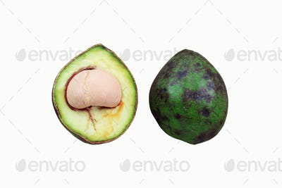 Avocado cut on white background