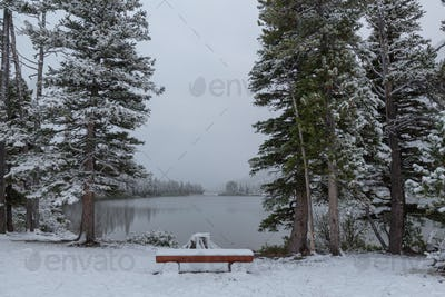 Winter in Glacier Park