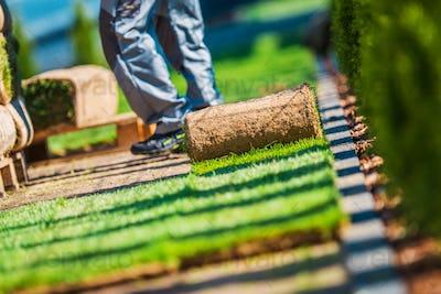 Grass Turfs Installation Work