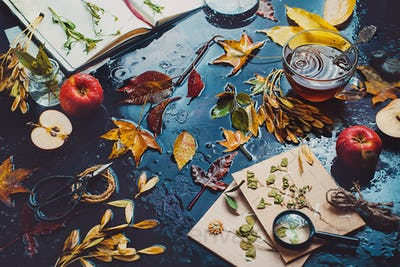 Table with tea cup, autumn leaves, apples and an open notebook with herbs.