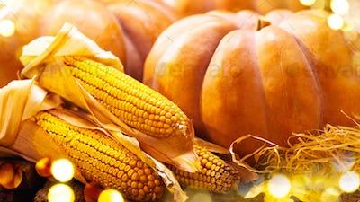 Thanksgiving Day background. Autumn pumpkins and corn. Harvest