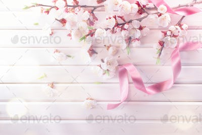 Spring blossom on white wooden plank background. Pink blooming a