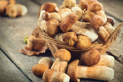 Ceps mushroom. Boletus closeup on wooden rustic table