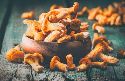 Raw wild chanterelles mushrooms in a bowl over old rustic backgr
