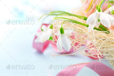 Easter background. Beautiful spring snowdrop flower with decorat