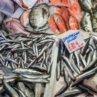 Fresh fish for sale at a market