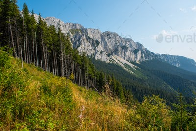 Piatra Craiului limestone mountains. Southern Carpathians, Transylvania, Romania