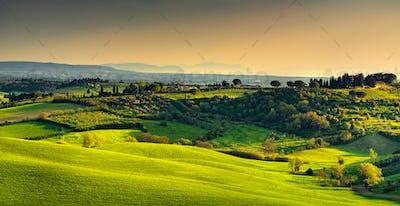 Maremma countryside, sunset landscape. Elba island on horizon. T