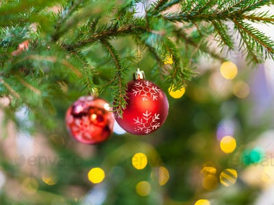 two red balls on natural christmas tree branch