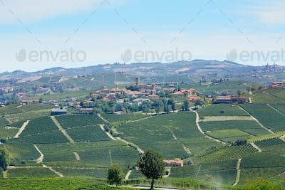 Serralunga d'Alba town with castle and vineyards in Italy