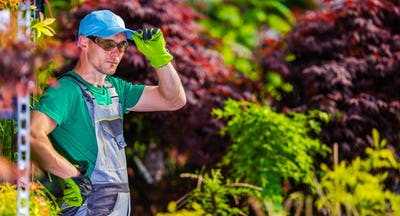 Greenhouse Garden Worker
