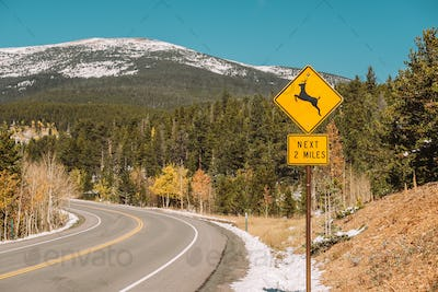 Deer crossing sign on highway at autumn