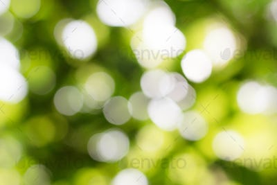 Beautiful bokeh of background
