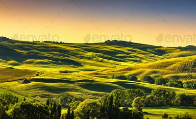Tuscany countryside landscape panorama at sunset, rolling hills,