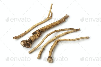 Fresh picked horseradish