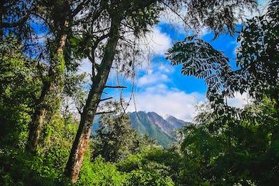 Majestic Gunung Sibayak volcano