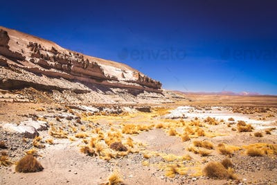 Landscape of the high peruvian plateau