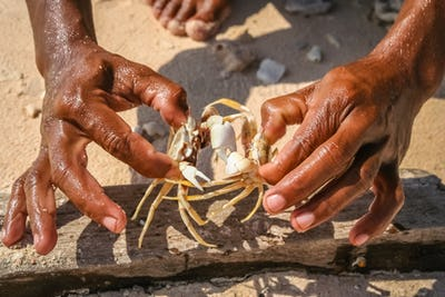 Indonesian boy showing crabs