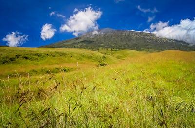 Green landscape on the hills of Gunung Rinjani volcano