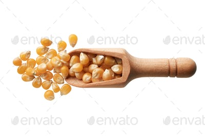 Dried corn seeds in a wooden scoop