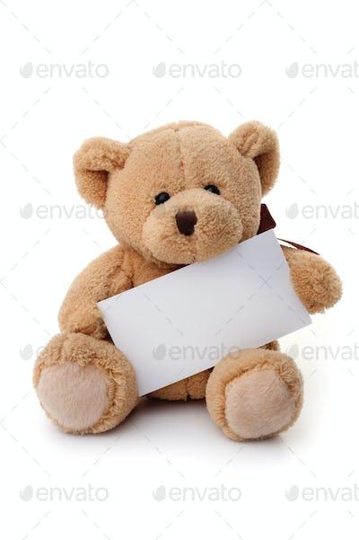 Teddy bear holding white banner