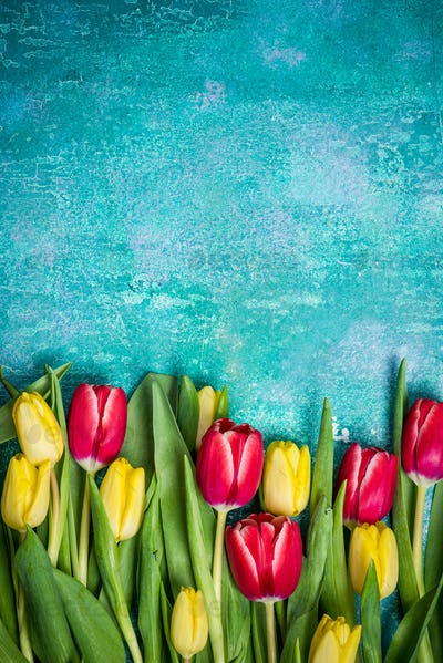 Fresh tulips Womens Day card mock up