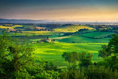 Maremma, rural sunset landscape. Countryside old farm and green