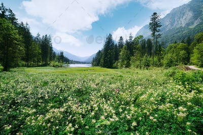 Amazing sunny summer day on the Hintersee lake