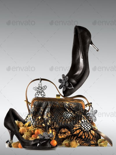 Shoes and purse display.