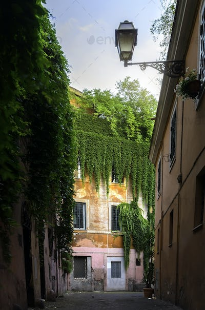 View of street inTrastevere