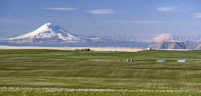 Oregon Agriculture Mt Rainier Mount Adams Cascade Range