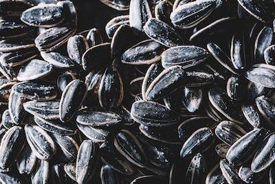 A pile of little black sunflower seeds.