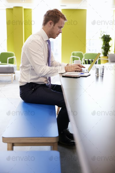 Businessman using laptop in an office meeting area, vertical