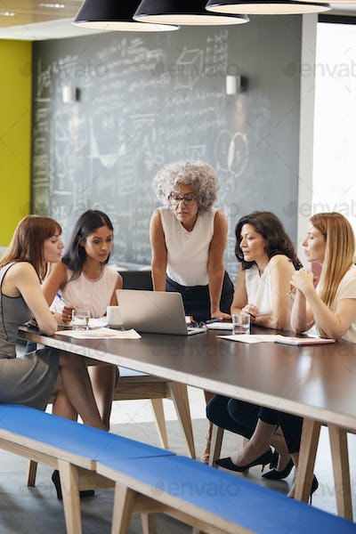Female work colleagues using laptop computer in a meeting