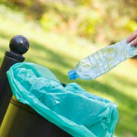 Hand of woman throwing bottle into recycling bin, littering of environmental