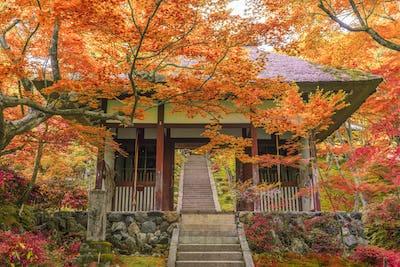 Jojakko Temple Kyoto