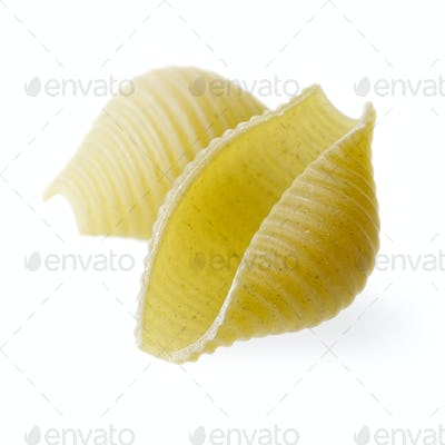 Green conchiglioni isolated