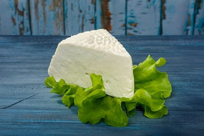 Cheese on a leaf salad