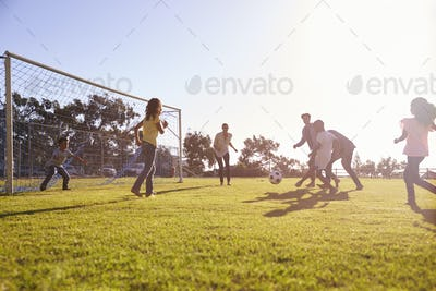 Two families enjoying a football game with their children
