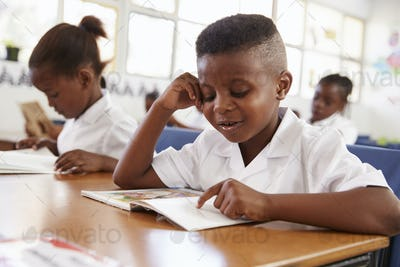 Elementary school boy reading a book at his desk in class