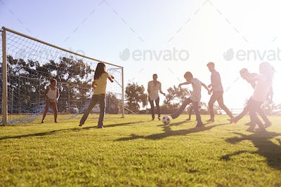 A young girl in a goal during a family football game
