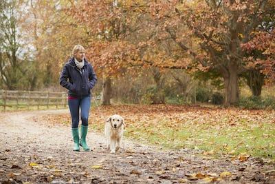 Mature Woman On Autumn Walk With Labrador