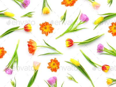 Floral pattern made of colorful tulips on white background. Top