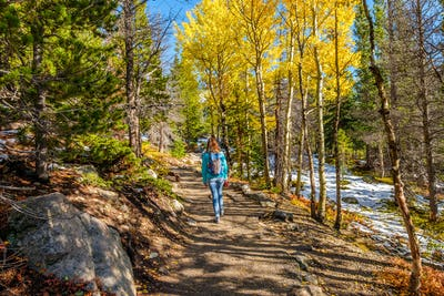 Tourist hiking in aspen grove at autumn