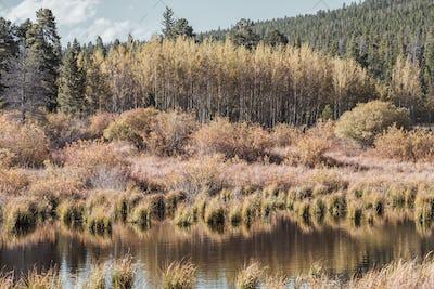 Lily Lake at Rocky Mountains, Colorado, USA.