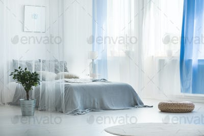 Decorative canopy in calm bedroom