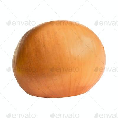 Fresh onion bulb isolated on white