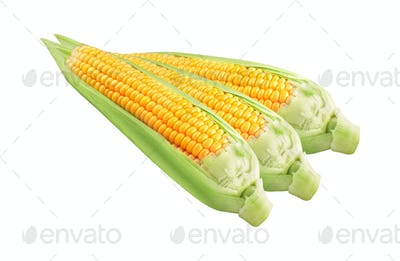 Corn on white background isolated